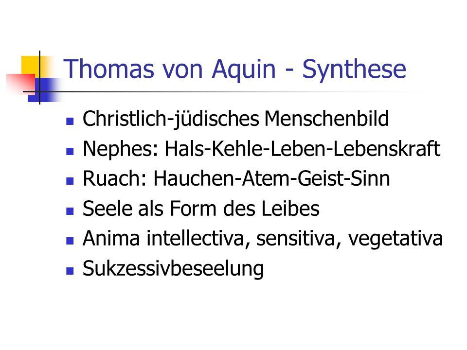 Thomas von Aquin - Synthese