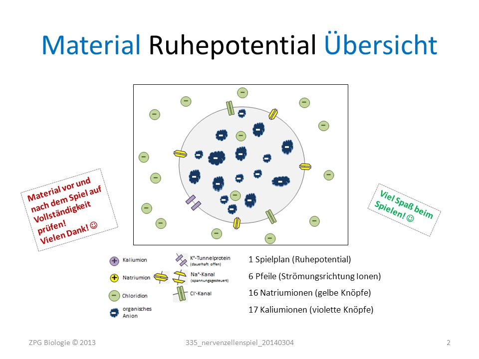 Material Ruhepotential Übersicht