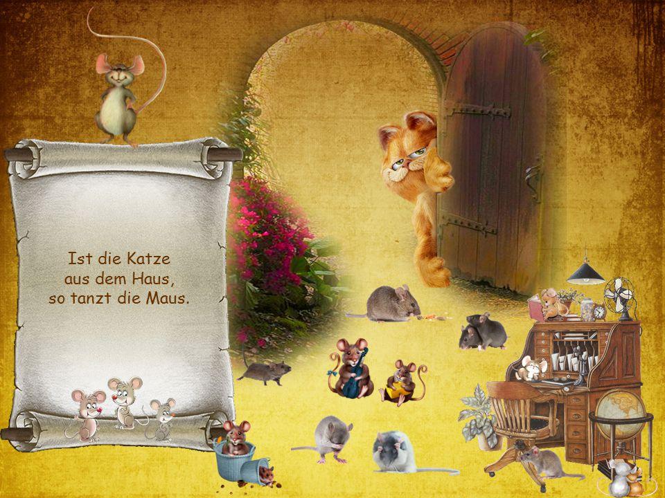 Ist die Katze aus dem Haus, so tanzt die Maus.