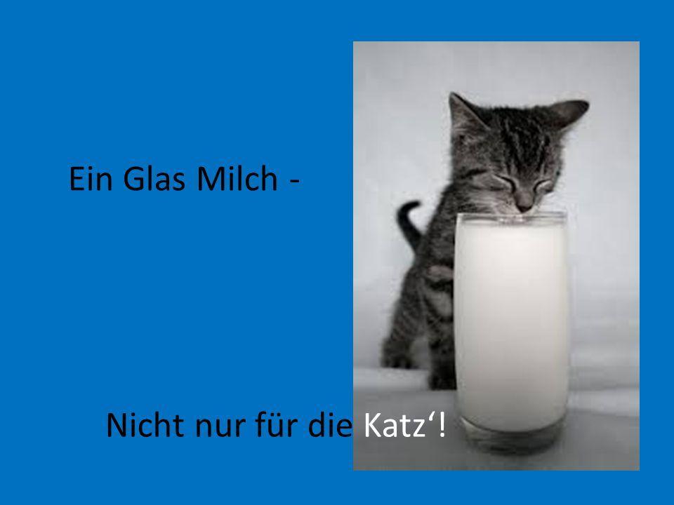 Ein Glas Milch - Nicht nur für die Katz'!