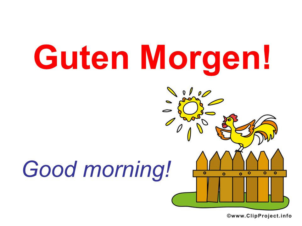 Guten Morgen! Good morning!