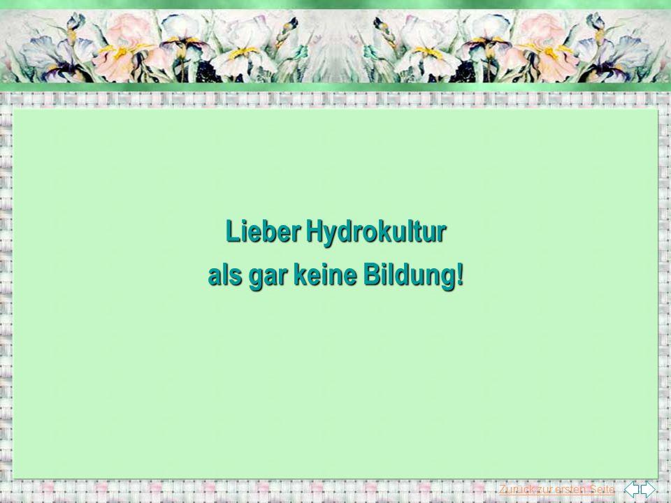 Lieber Hydrokultur als gar keine Bildung!