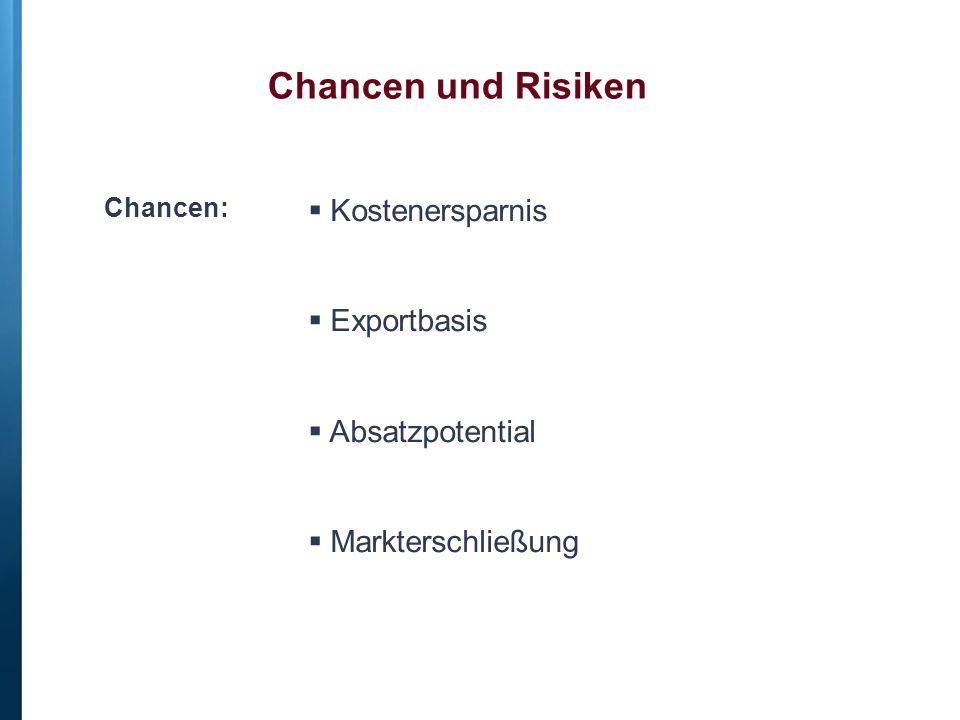 Chancen und Risiken Kostenersparnis Exportbasis Absatzpotential