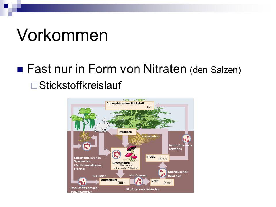 Vorkommen Fast nur in Form von Nitraten (den Salzen)