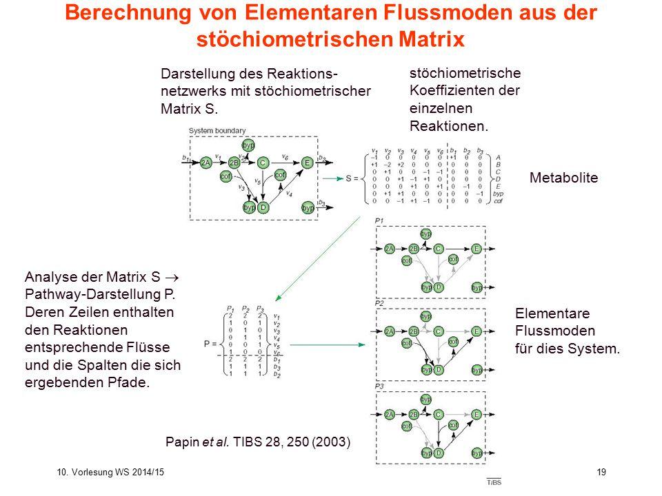 Berechnung von Elementaren Flussmoden aus der stöchiometrischen Matrix
