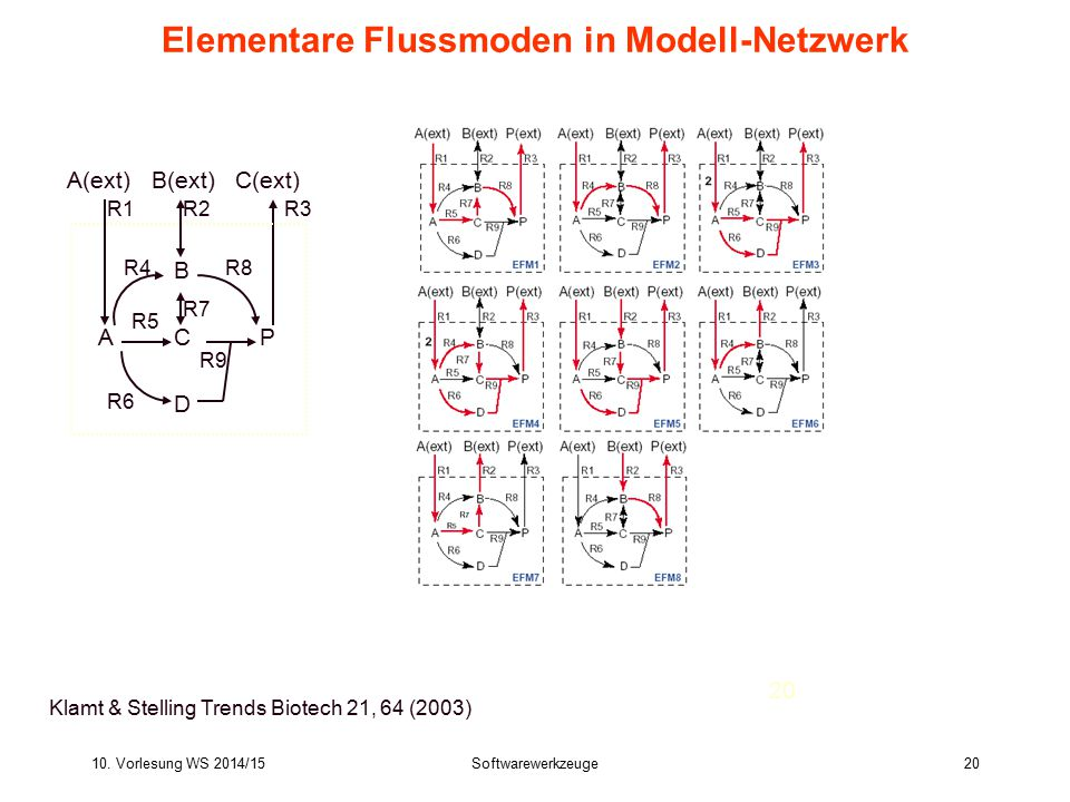 Elementare Flussmoden in Modell-Netzwerk
