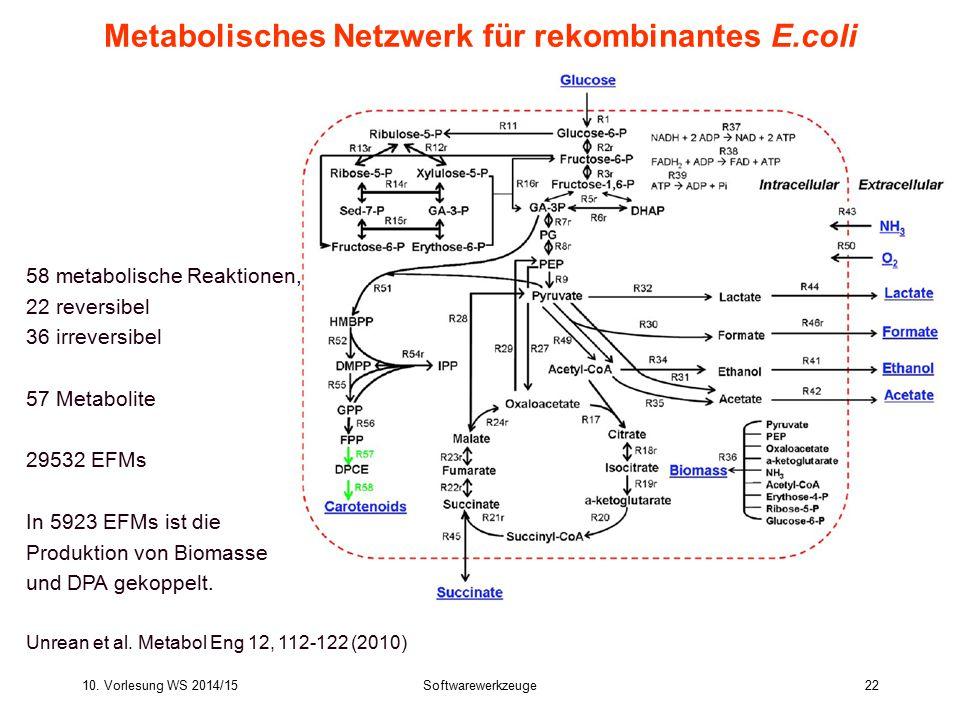 Metabolisches Netzwerk für rekombinantes E.coli