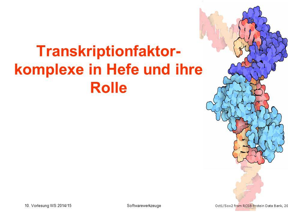 Transkriptionfaktor- komplexe in Hefe und ihre Rolle