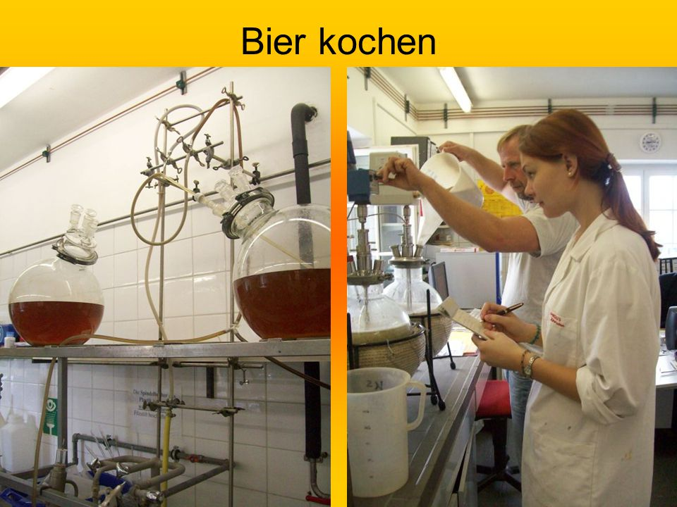 Bier kochen
