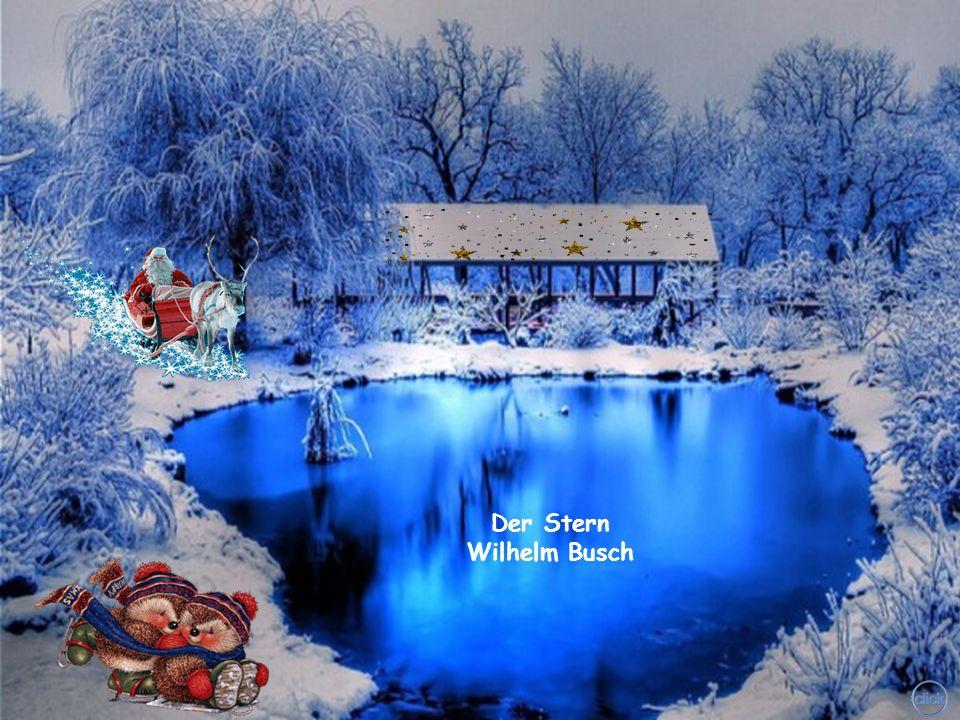 Der Stern Wilhelm Busch