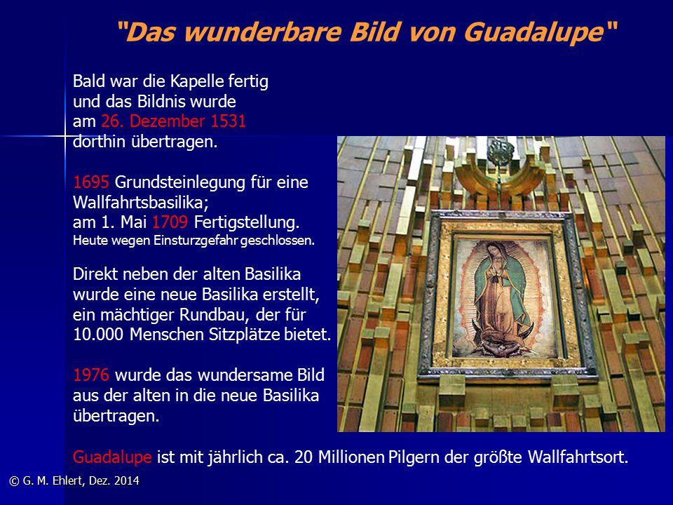 Das wunderbare Bild von Guadalupe