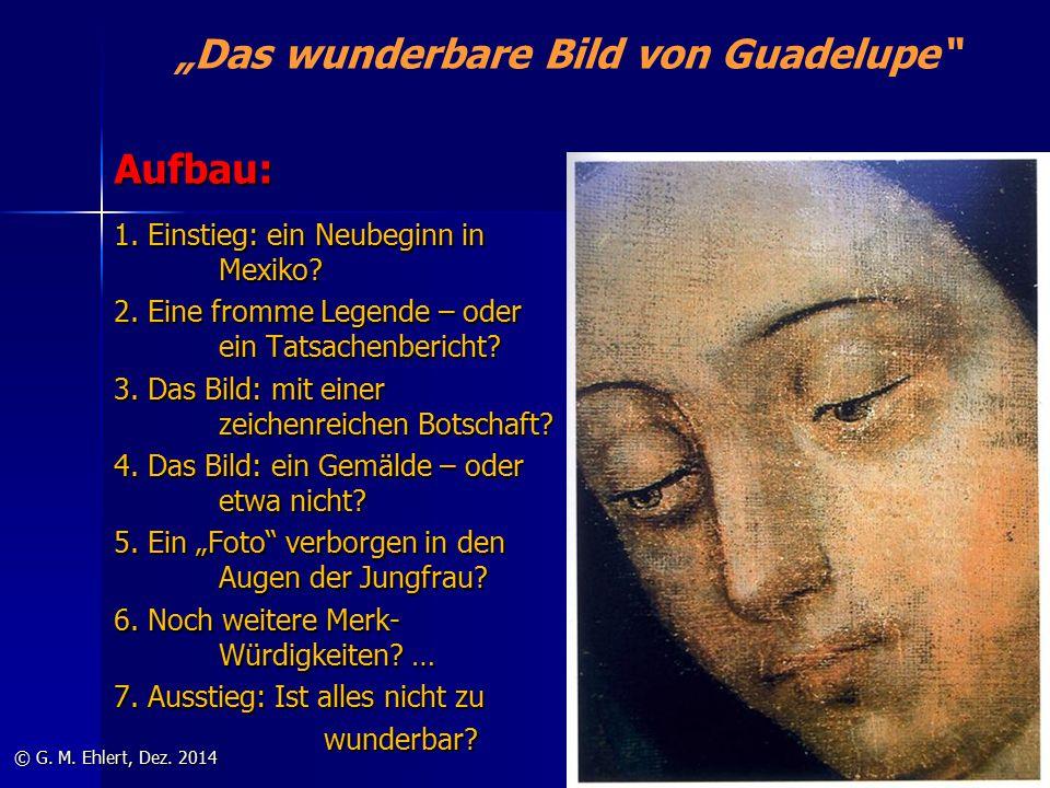 """""""Das wunderbare Bild von Guadelupe"""