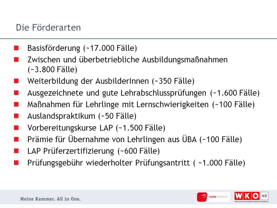 Die Förderarten Basisförderung (~17.000 Fälle)