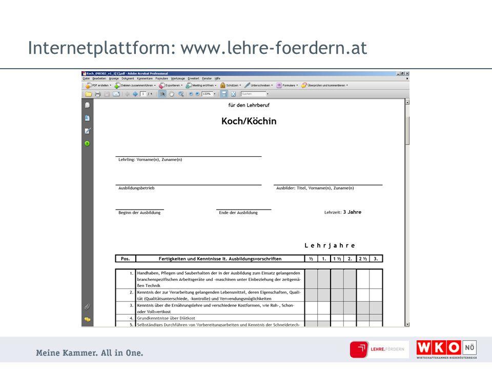 Internetplattform: www.lehre-foerdern.at