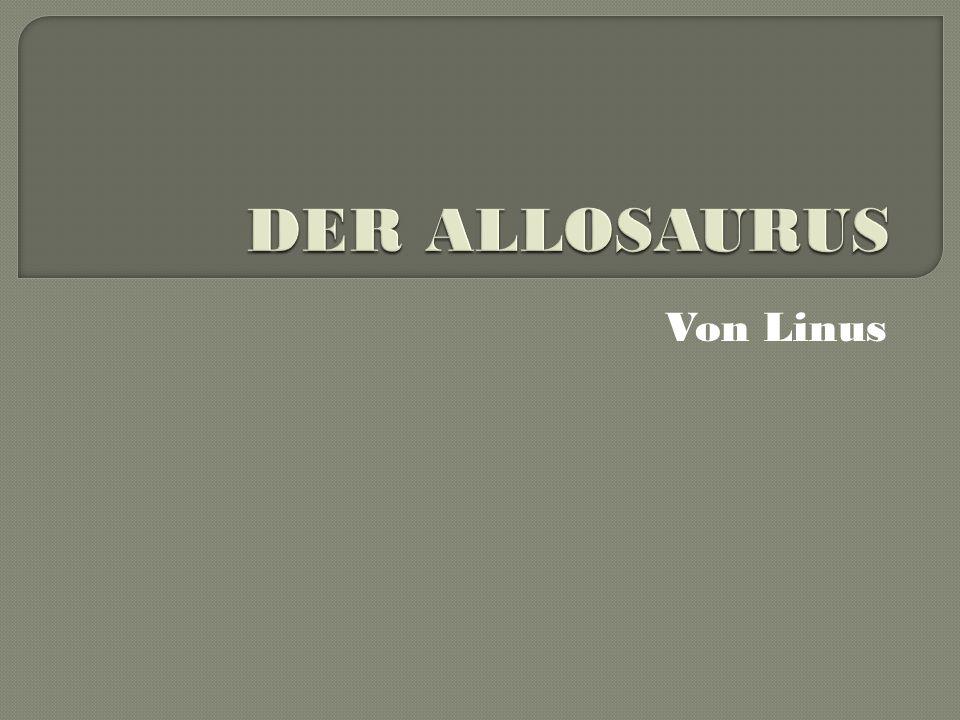 DER ALLOSAURUS Von Linus