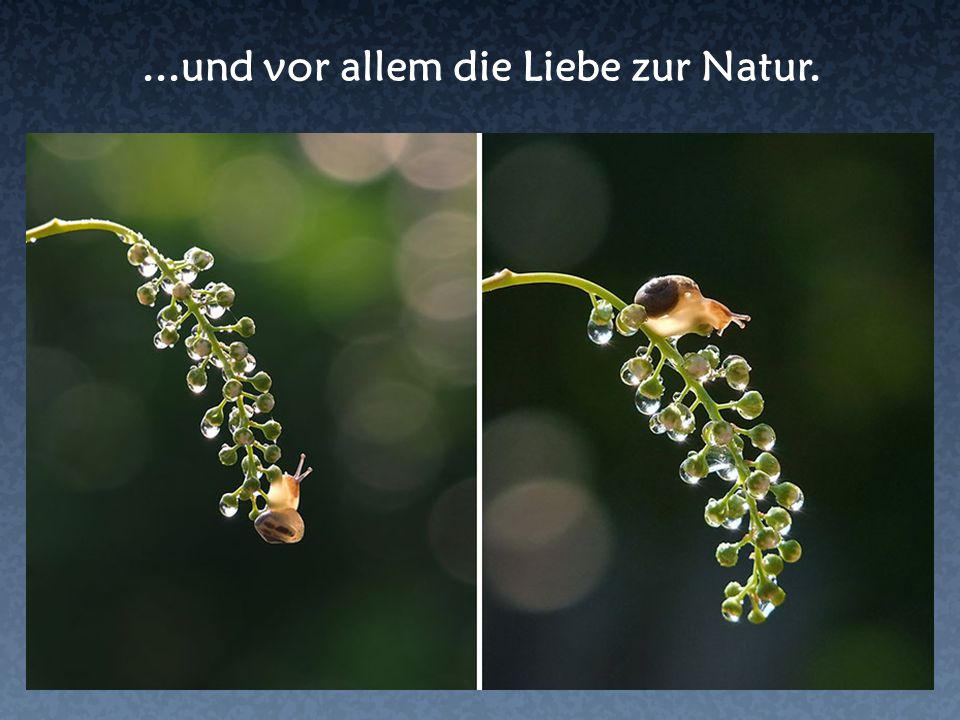 ...und vor allem die Liebe zur Natur.