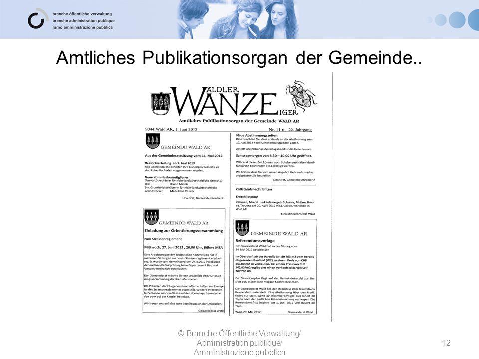 Amtliches Publikationsorgan der Gemeinde..