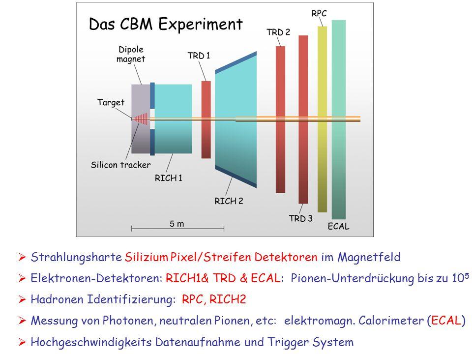 Das CBM Experiment  Strahlungsharte Silizium Pixel/Streifen Detektoren im Magnetfeld.