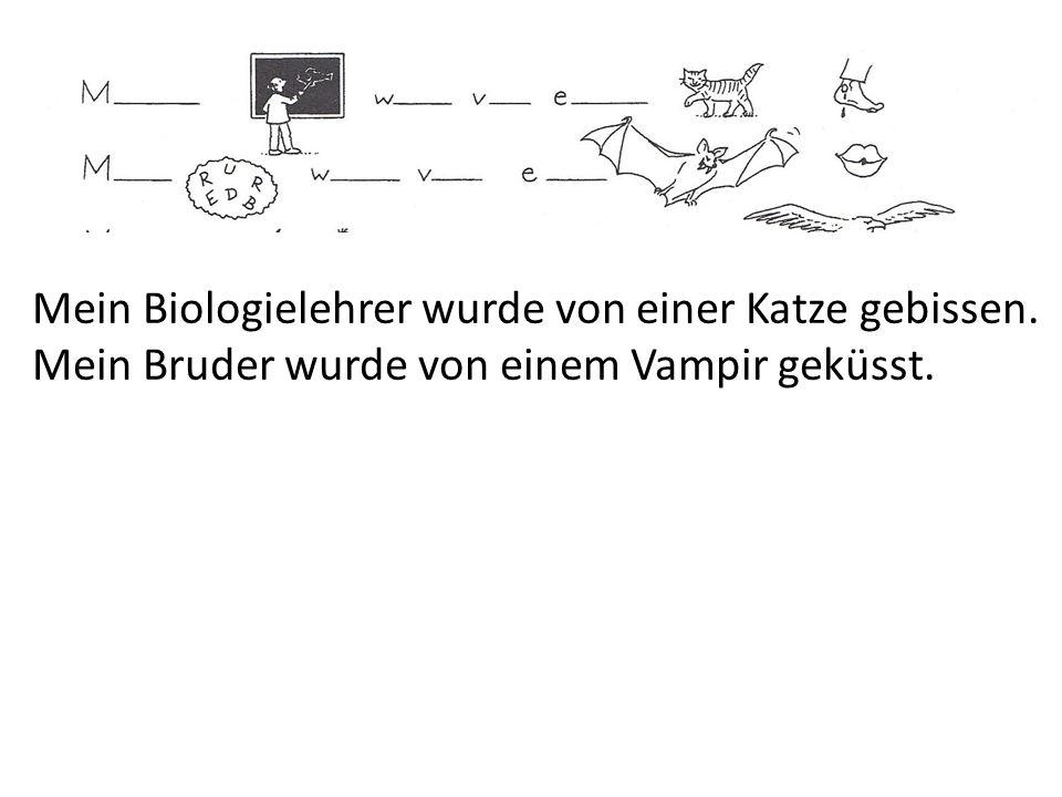 Mein Biologielehrer wurde von einer Katze gebissen.