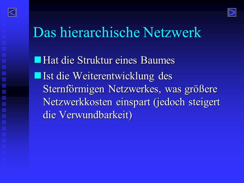 Das hierarchische Netzwerk