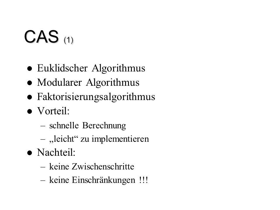 CAS (1) Euklidscher Algorithmus Modularer Algorithmus