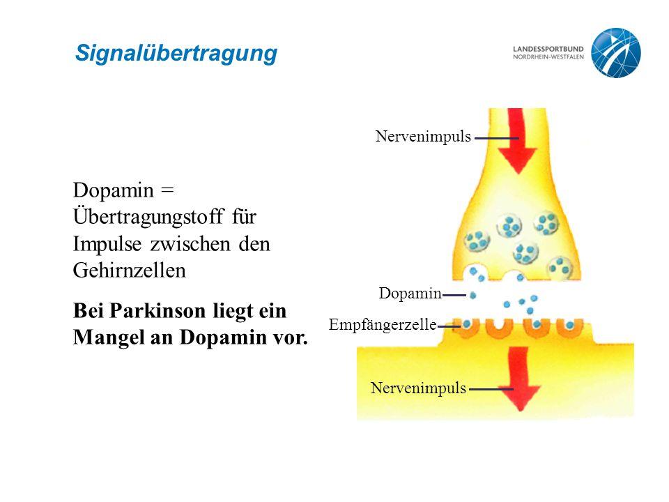 Signalübertragung Nervenimpuls. Dopamin. Empfängerzelle. Dopamin = Übertragungstoff für Impulse zwischen den Gehirnzellen.