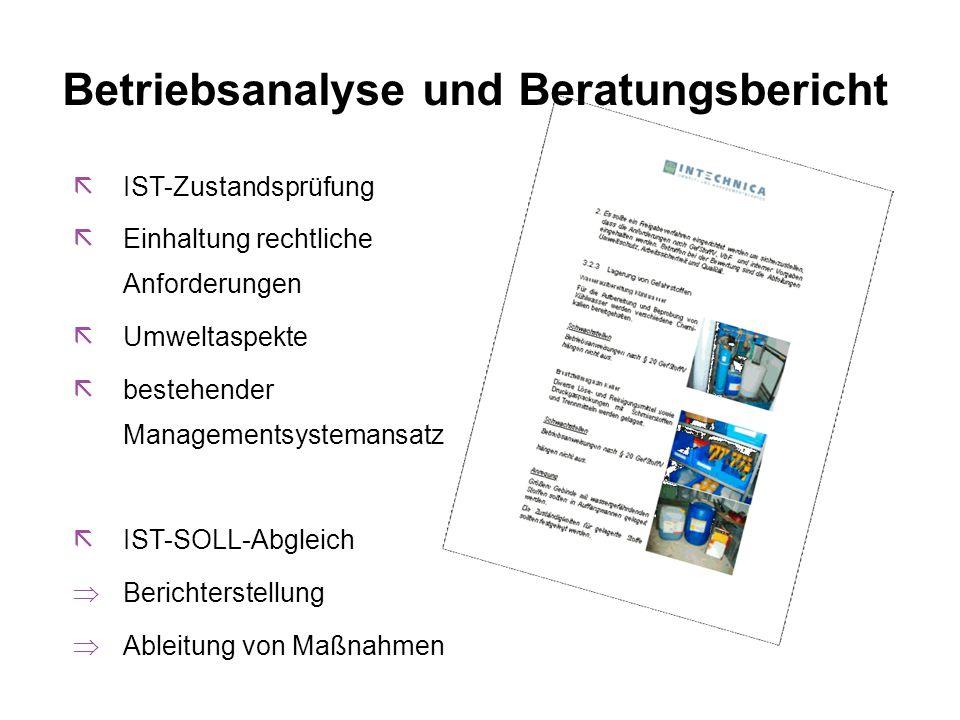 Betriebsanalyse und Beratungsbericht