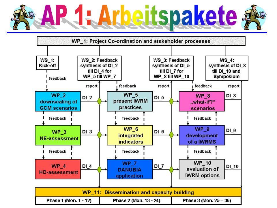 AP 1: Arbeitspakete