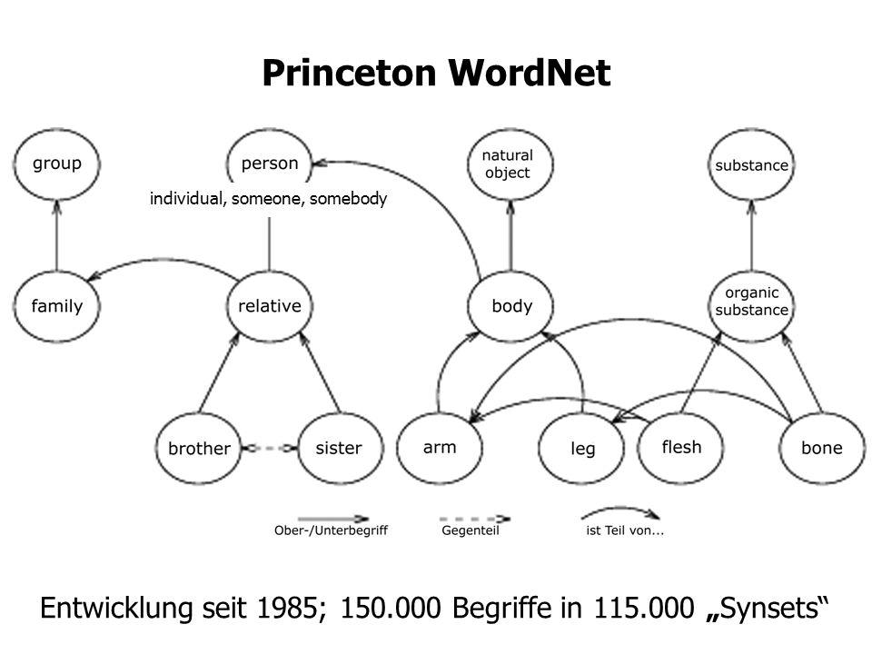 Princeton WordNet individual, someone, somebody.