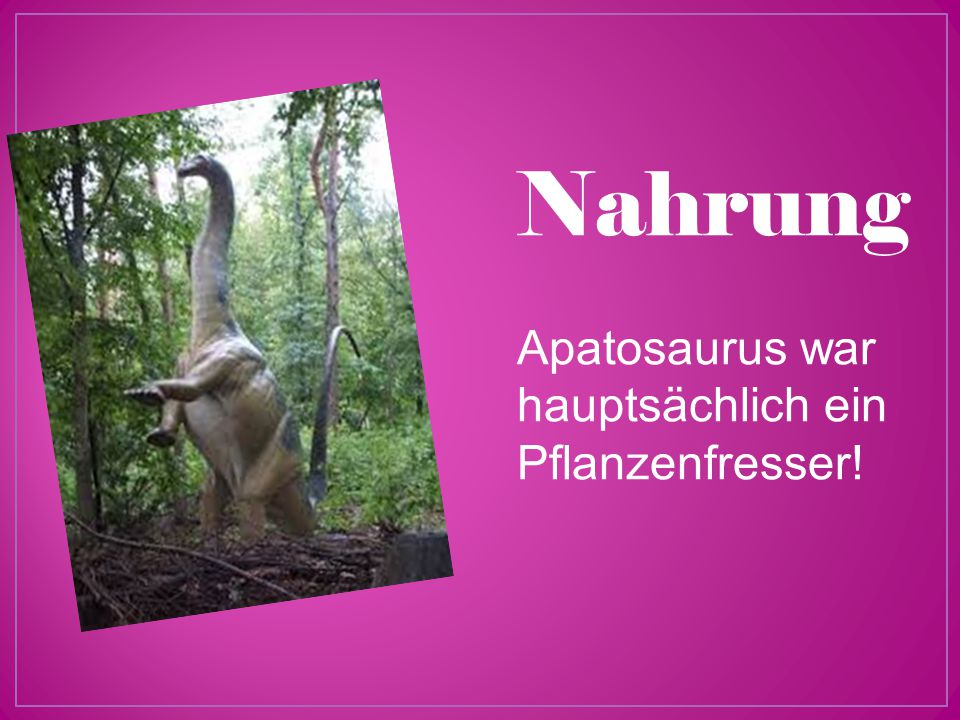 Nahrung Apatosaurus war hauptsächlich ein Pflanzenfresser!