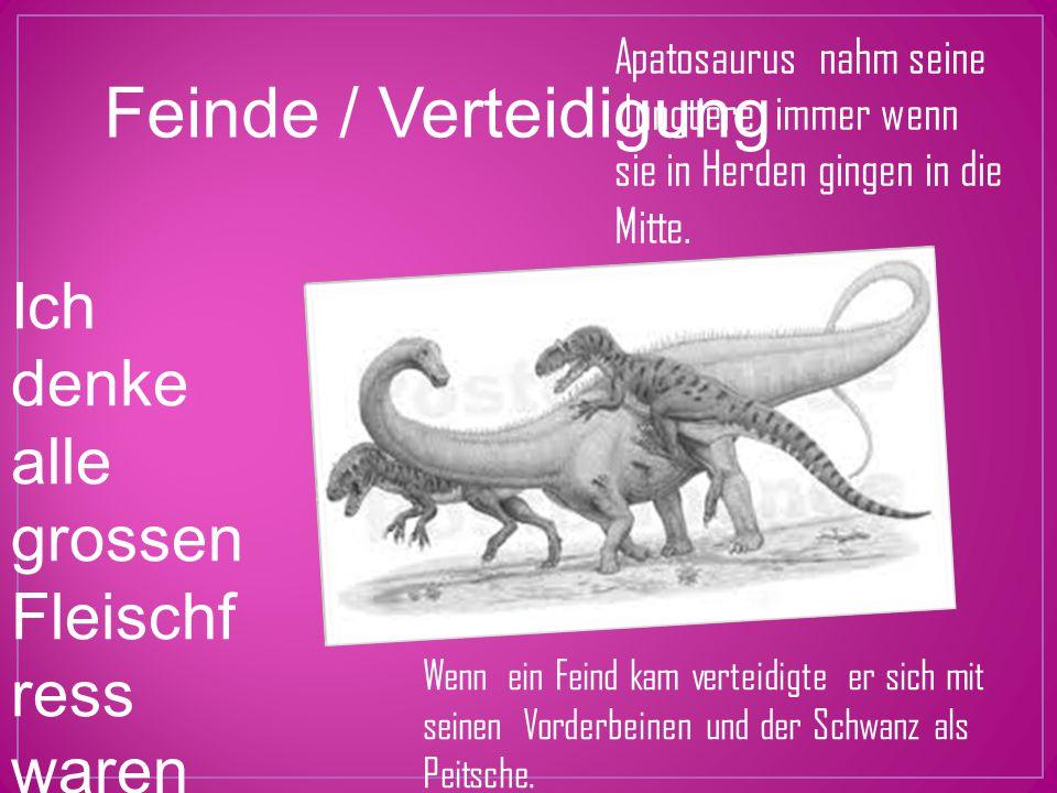 Apatosaurus nahm seine Jungtiere immer wenn sie in Herden gingen in die Mitte.