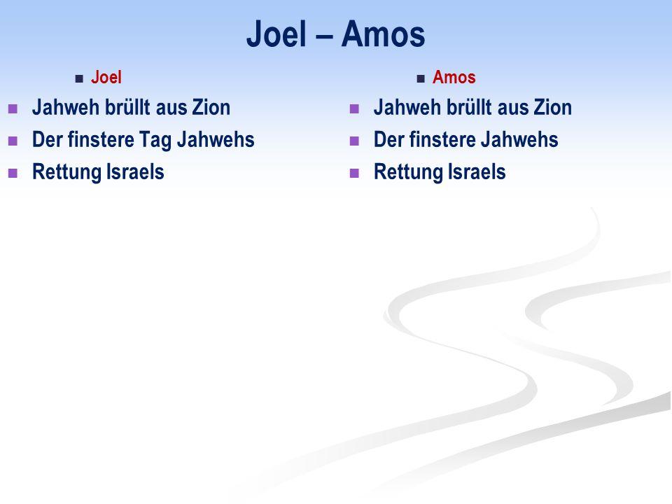 Joel – Amos Jahweh brüllt aus Zion Der finstere Tag Jahwehs