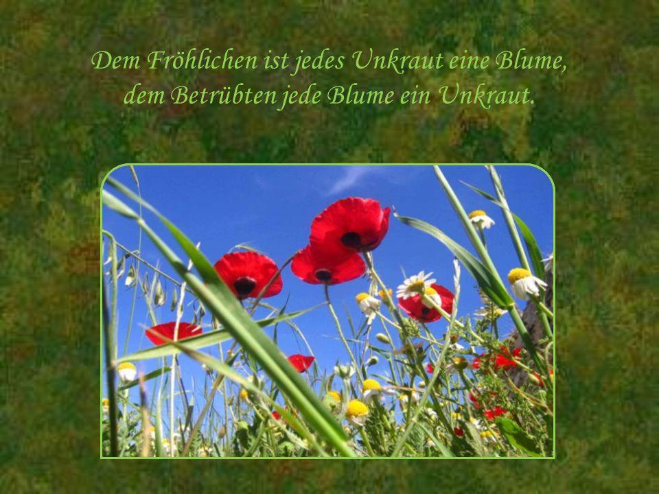 Dem Fröhlichen ist jedes Unkraut eine Blume, dem Betrübten jede Blume ein Unkraut.