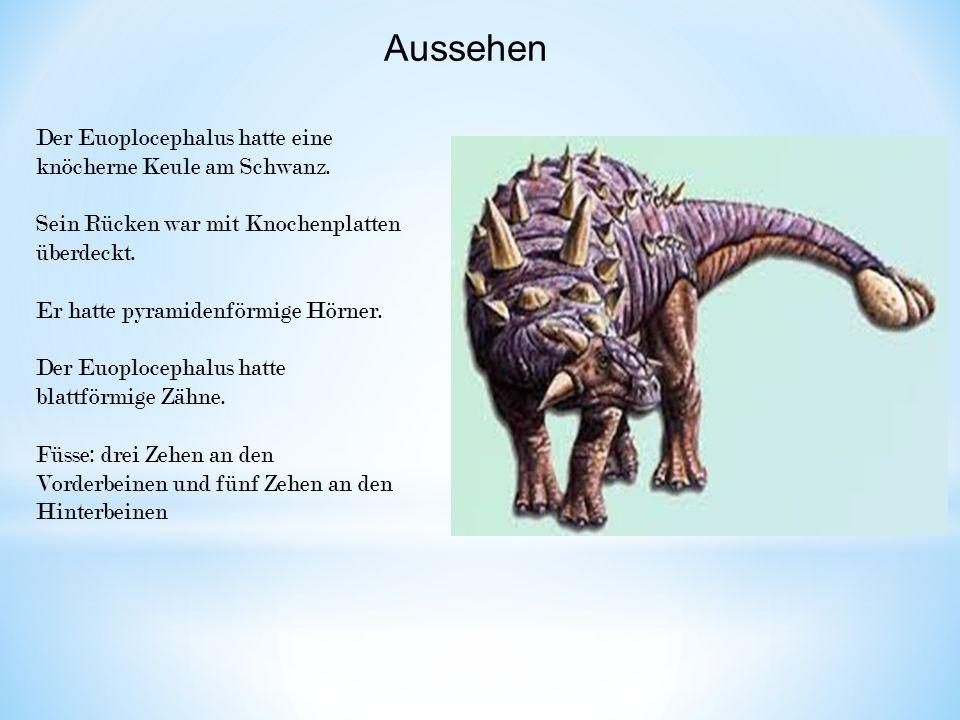 Aussehen Der Euoplocephalus hatte eine knöcherne Keule am Schwanz.