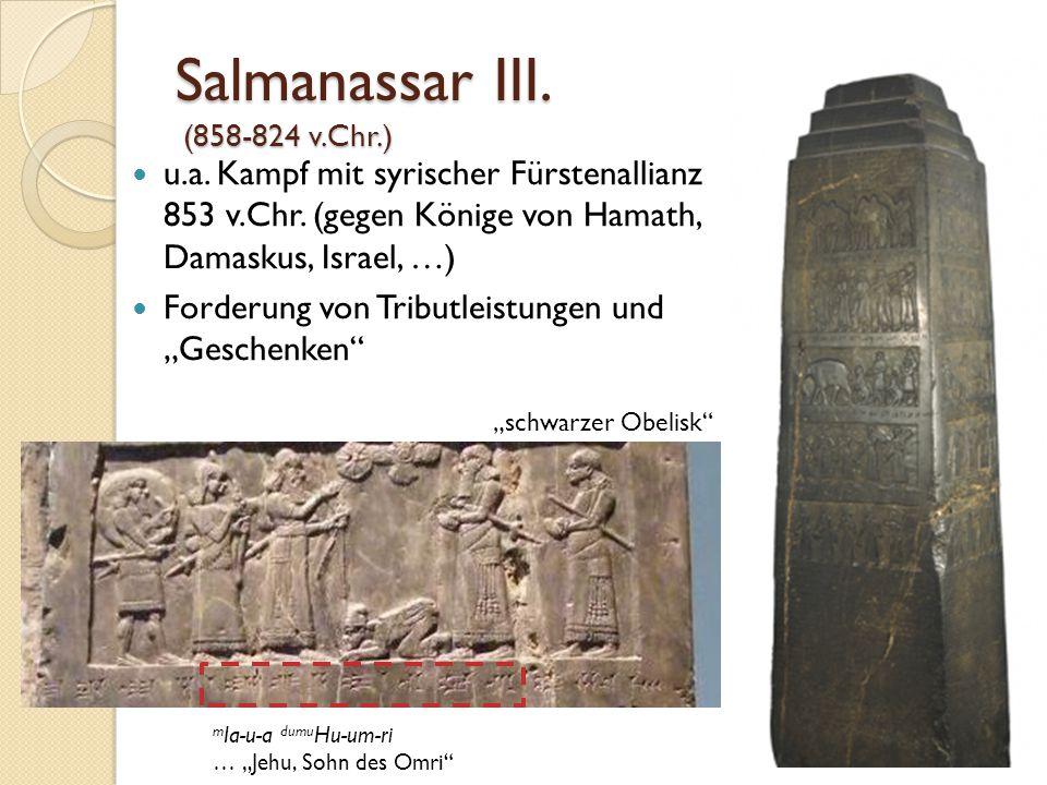 Salmanassar III. (858-824 v.Chr.)