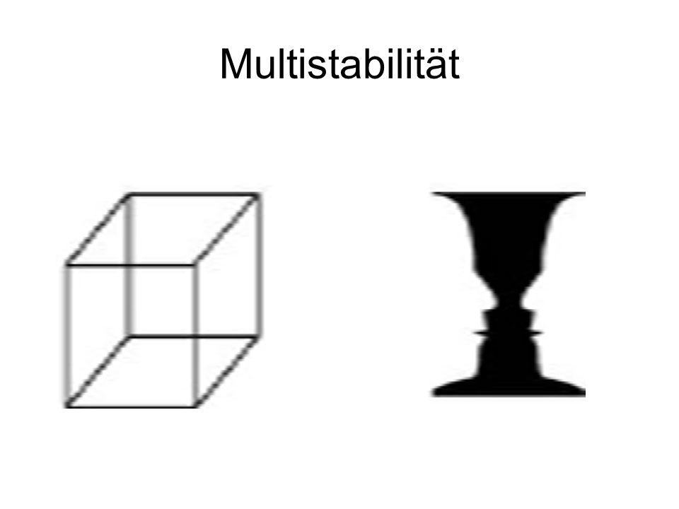 Multistabilität