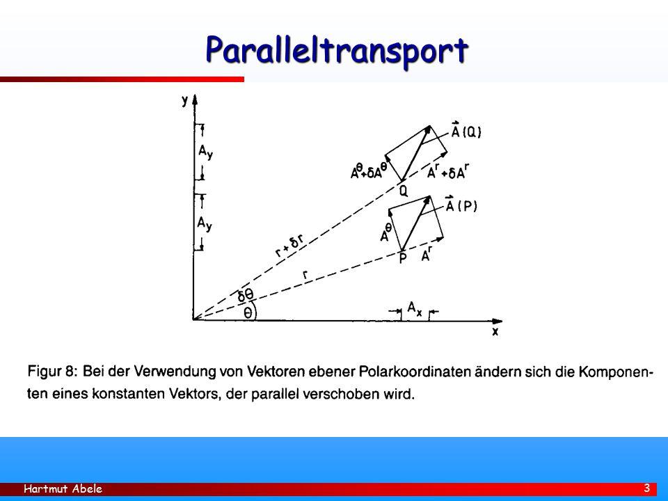 Paralleltransport Hartmut Abele