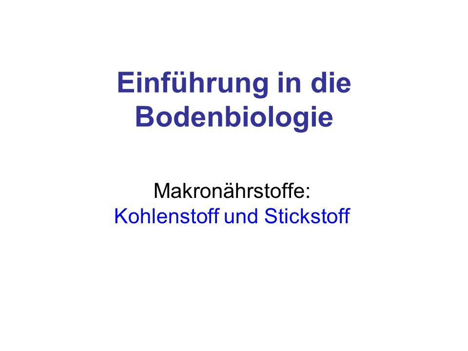 Einführung in die Bodenbiologie