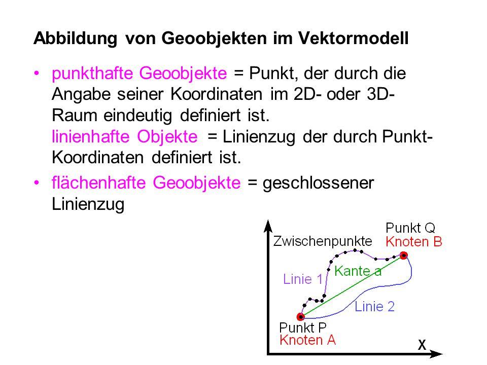 Abbildung von Geoobjekten im Vektormodell