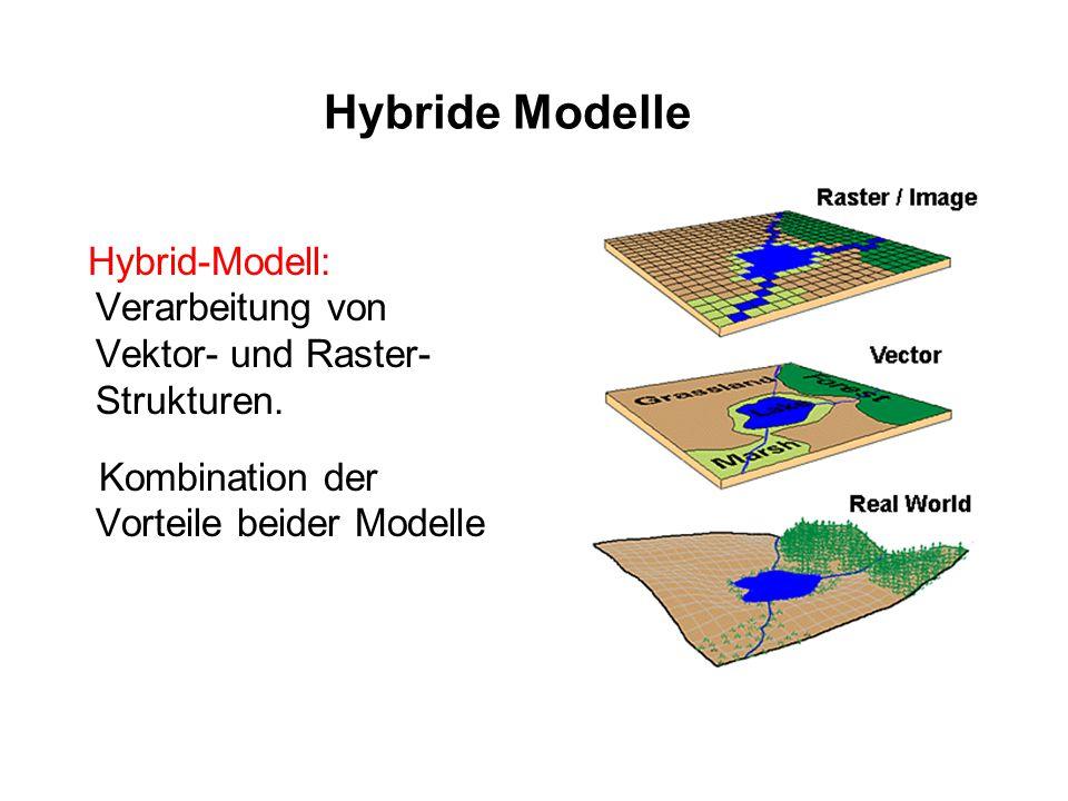 Hybride Modelle Hybrid-Modell: Verarbeitung von Vektor- und Raster-Strukturen.