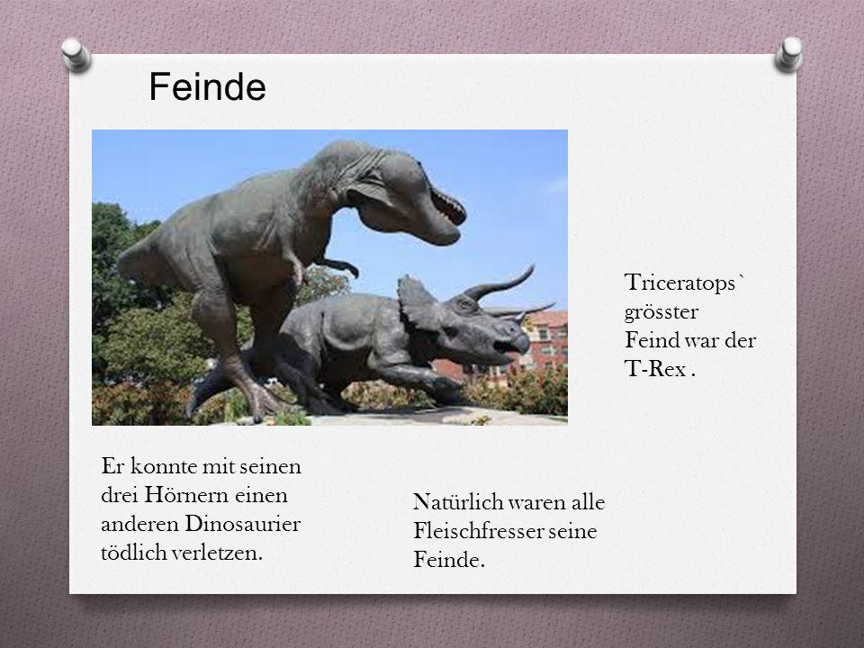 Feinde Triceratops` grösster Feind war der T-Rex .
