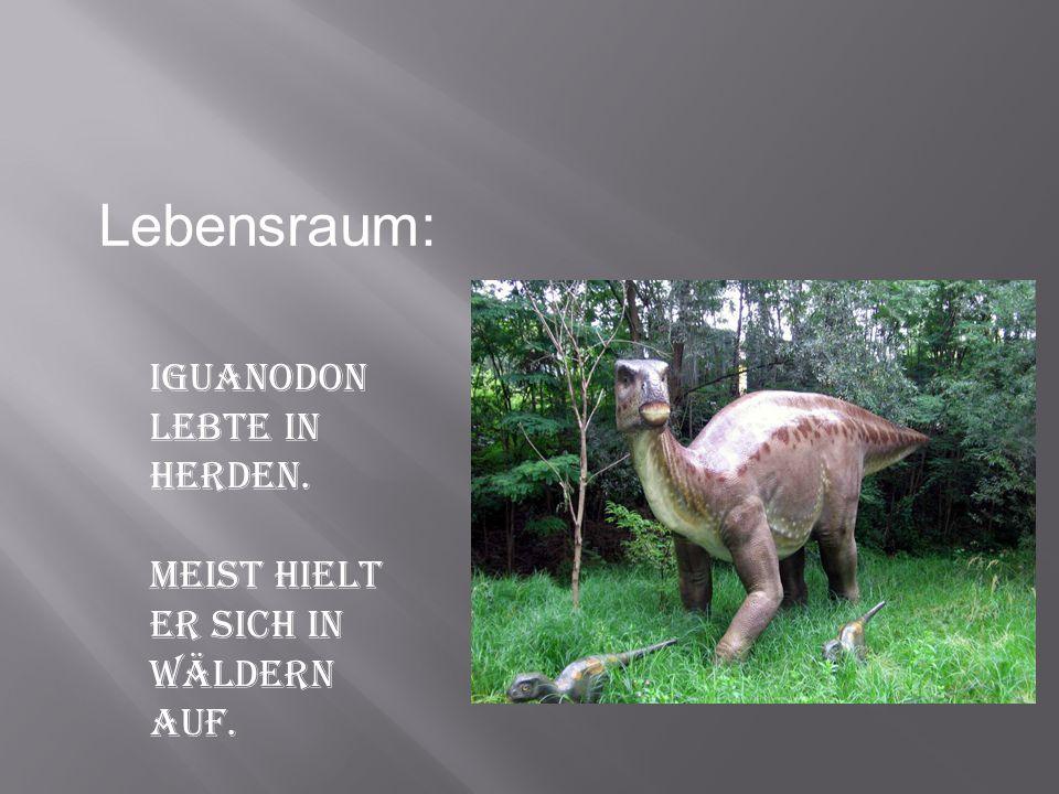 Lebensraum: Iguanodon lebte in Herden.