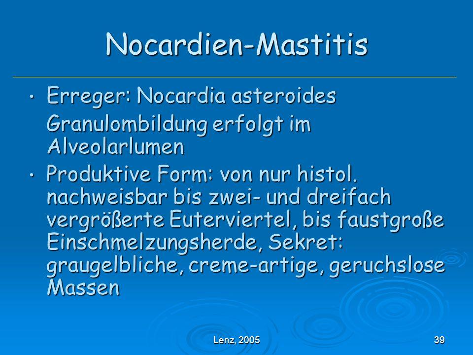 Nocardien-Mastitis Erreger: Nocardia asteroides