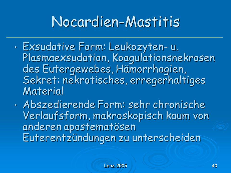 Nocardien-Mastitis
