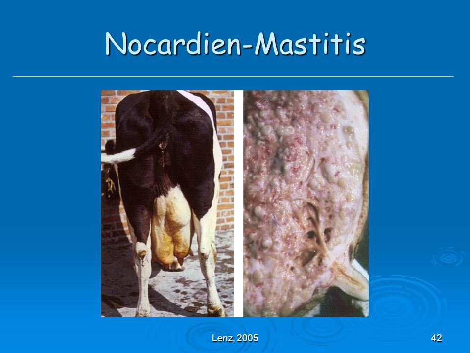 Nocardien-Mastitis Lenz, 2005