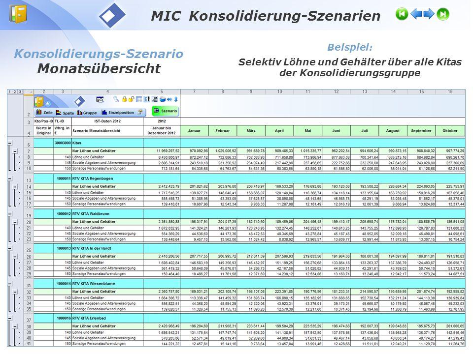 MIC Konsolidierung-Szenarien Monatsübersicht