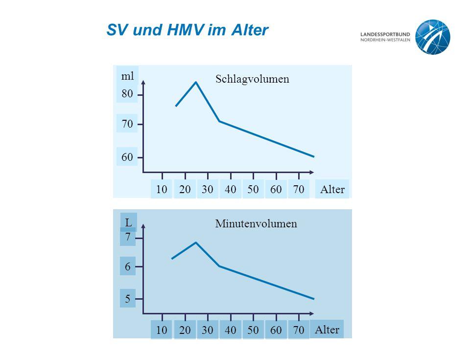SV und HMV im Alter ml Alter 10 20 30 40 50 60 70 80 Schlagvolumen L