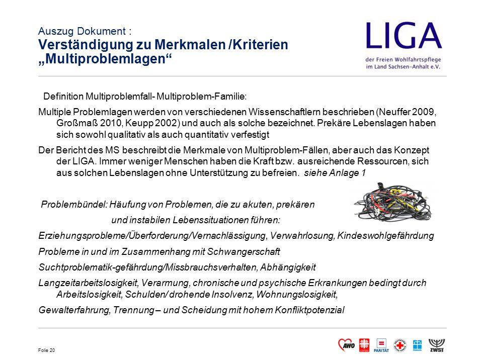 """Auszug Dokument : Verständigung zu Merkmalen /Kriterien """"Multiproblemlagen"""