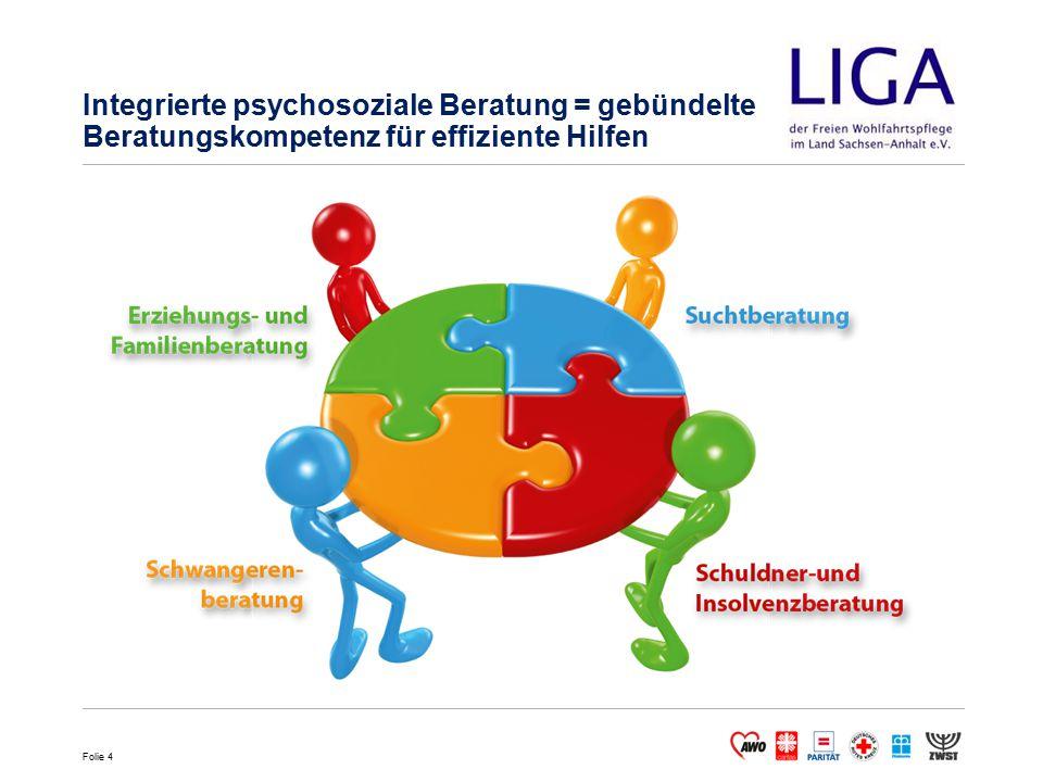 Integrierte psychosoziale Beratung = gebündelte Beratungskompetenz für effiziente Hilfen