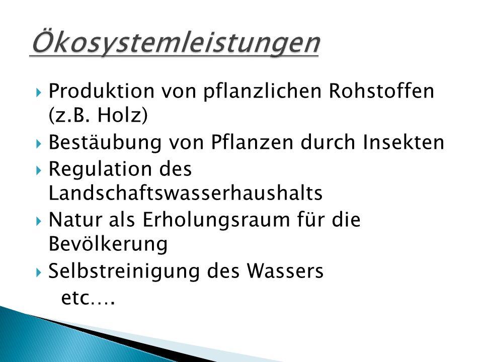 Ökosystemleistungen Produktion von pflanzlichen Rohstoffen (z.B. Holz)